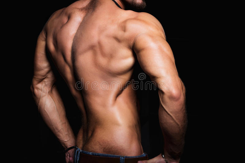 Muscular back and torso of young man. Perfect. Back muscles and triceps stock photo