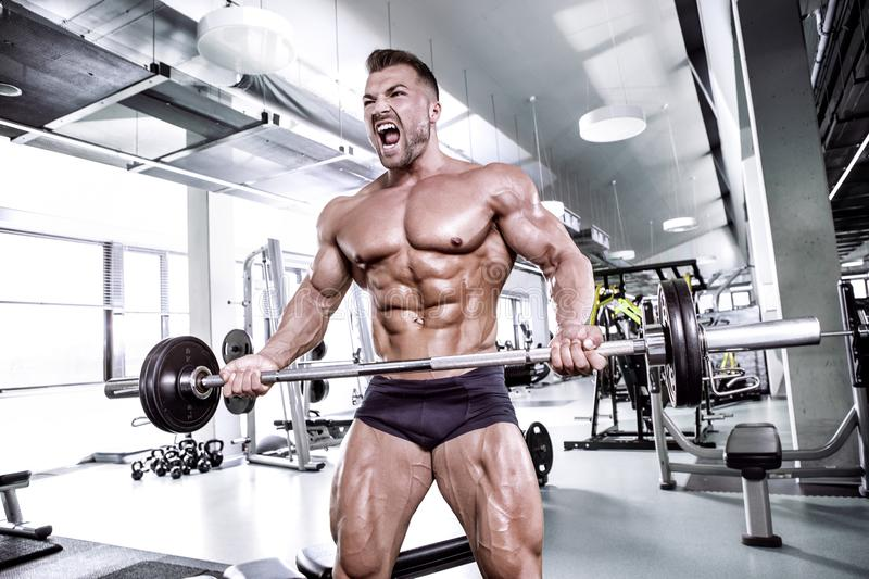 Muscular bodybuilder guy doing exercises with dumbbell royalty free stock image