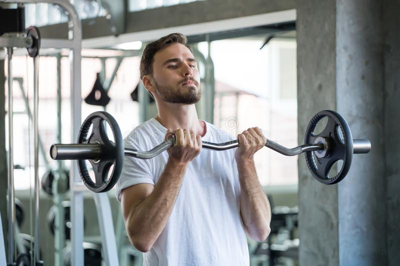 Muscular bodybuilder guy doing exercises with weight lifting barbell  in gym . sport young fitness man training .work out healthy royalty free stock photos