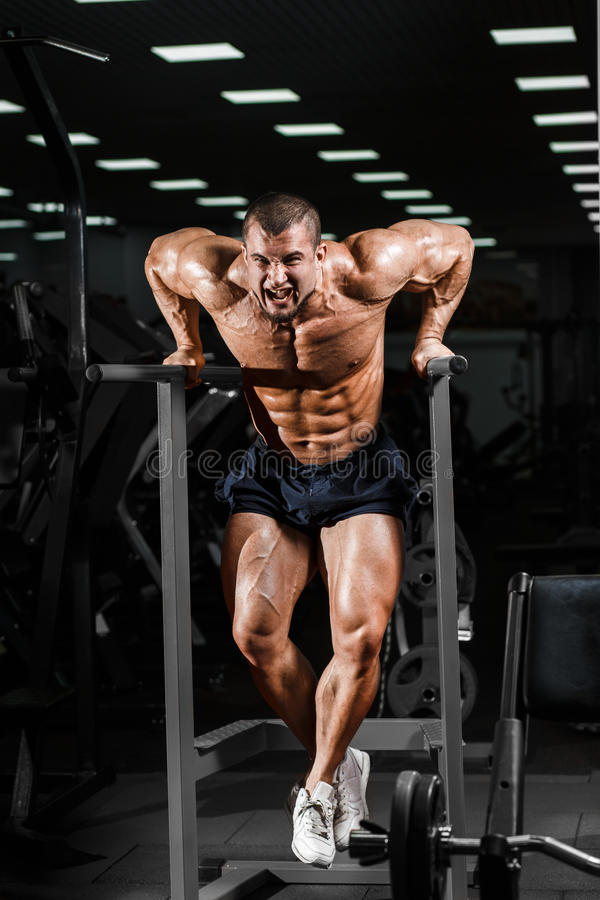 Muscular bodybuilder working out in gym doing exercises on parallel bars. Athlitic male naked torso stock image