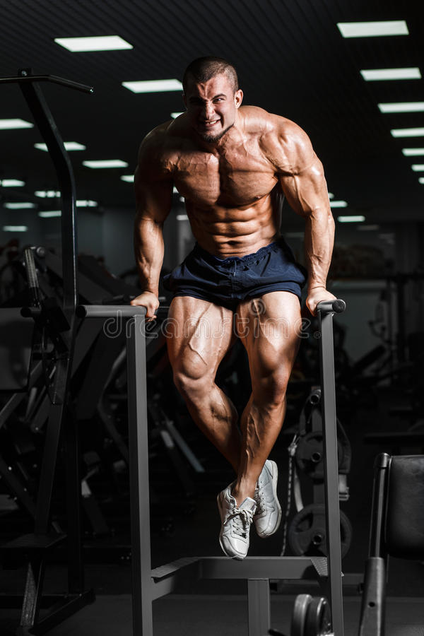Muscular bodybuilder working out in gym doing exercises on parallel bars. Athlitic male naked torso stock photography