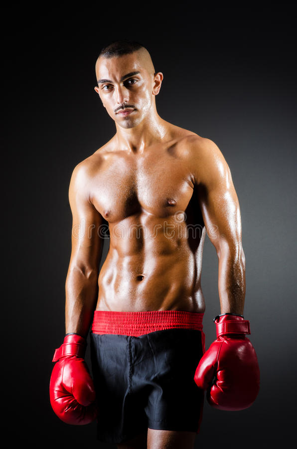 Download Muscular Boxer Royalty Free Stock Image - Image: 29057236