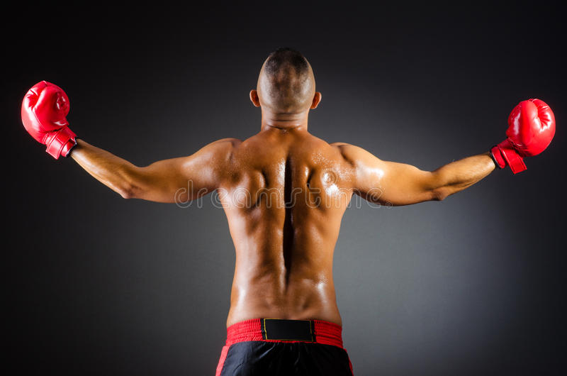 Download Muscular boxer in studio stock image. Image of competitive - 26841831