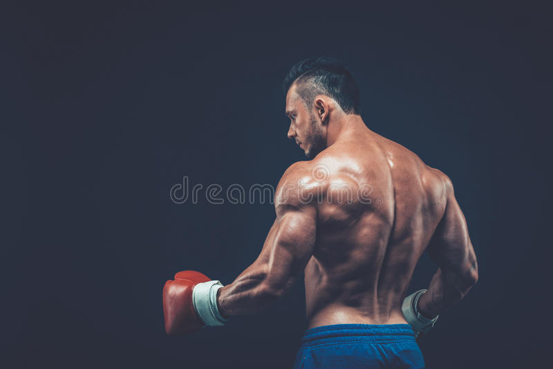 Muscular boxer in studio shooting, on black background. stock photography