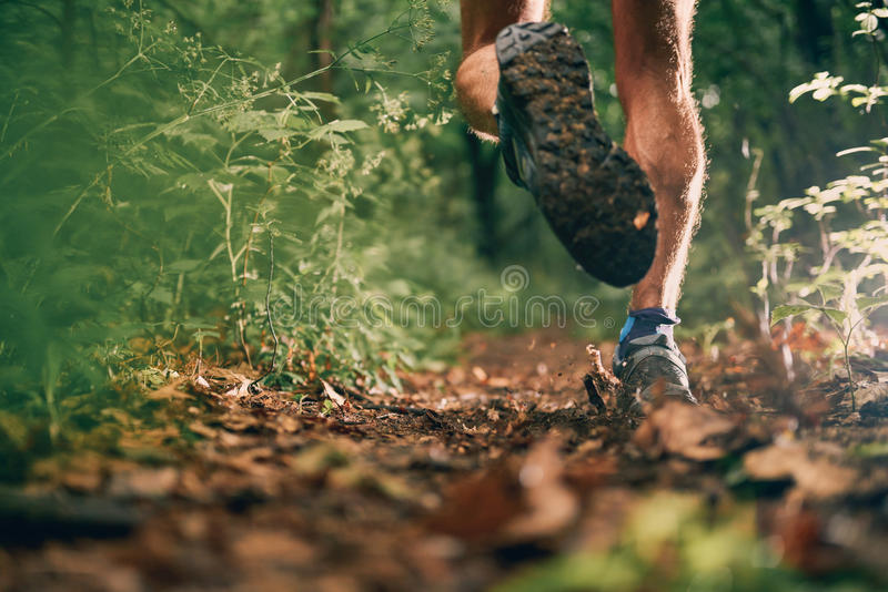 Muscular calves of a fit male jogger training for cross country forest trail race in nature park. royalty free stock photos
