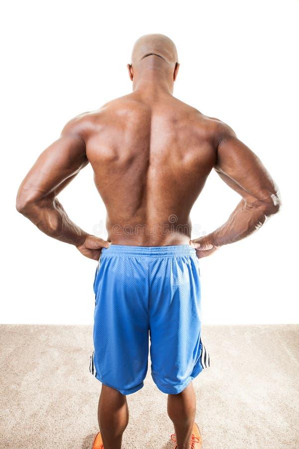 Muscular equipa para trás imagem de stock royalty free