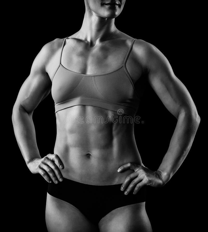 Download Muscular female body stock photo. Image of exercise, gymnasium - 27837676