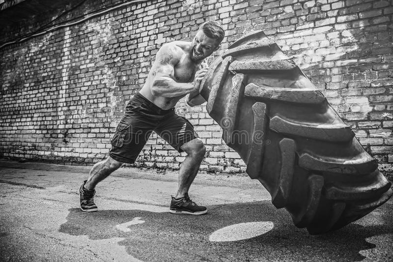 Muscular fitness shirtless man moving large tire. stock photo