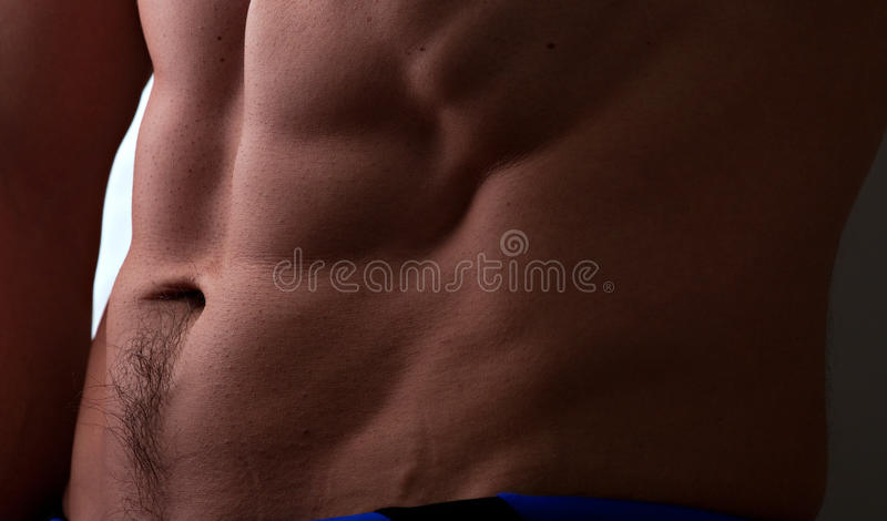 Muscular Male Abdomen Stock Image