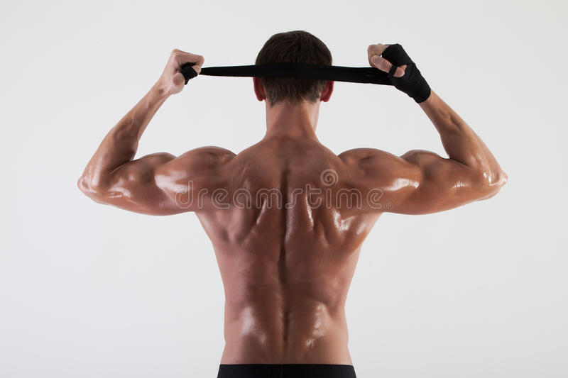 The muscular male back on white background royalty free stock image