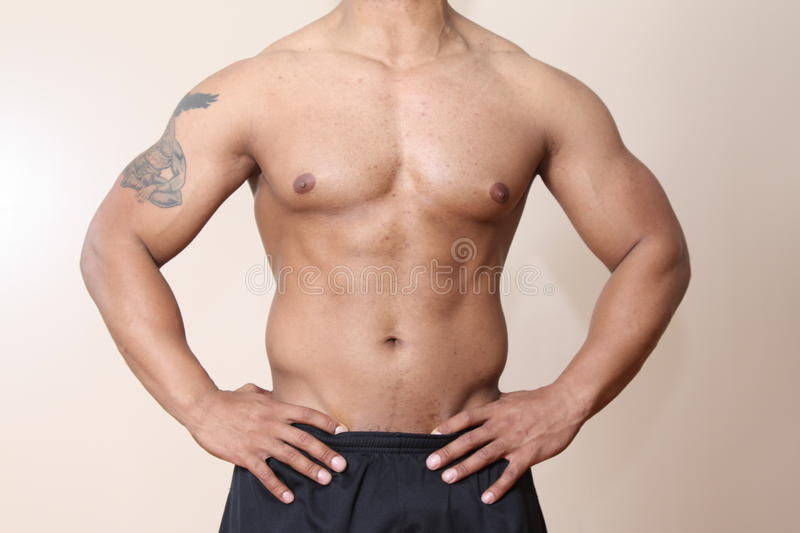 Muscular Male Body Stock Photo Image Of American Handsome 10234864