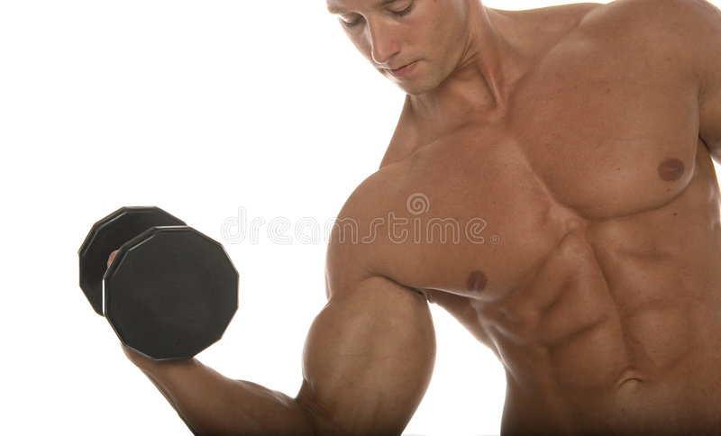 Muscular male body builder stock photos