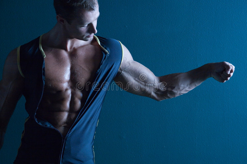 Muscular male body builder royalty free stock photo