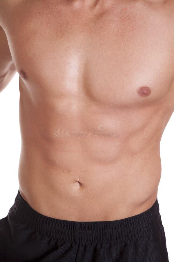 Muscular Male Torso Stock Photos