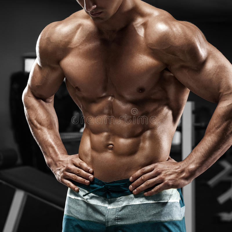 Muscular man abs in gym, shaped abdominal. Strong male naked torso, working out royalty free stock images