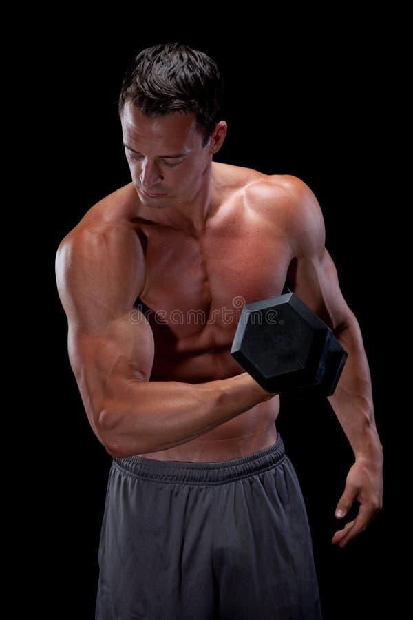 Muscular Man Curling Barbell