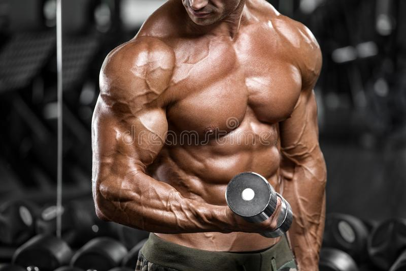 Muscular man in gym doing exercise for biceps. Strong male naked torso abs, working out royalty free stock photography