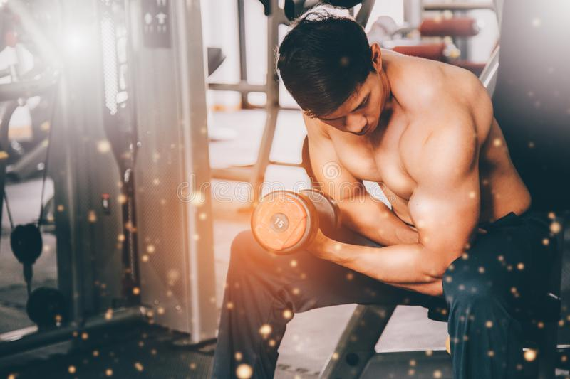 Muscular man in gym doing exercises with dumbbells, strong male royalty free stock images