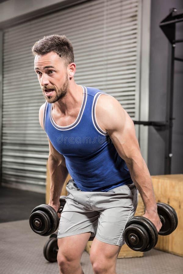 Muscular man lifting dumbbells royalty free stock photos