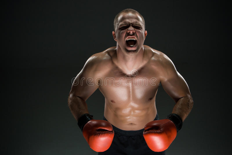Muscular man screaming and roar. Muscular man in red gloves screaming and roar over black background stock photography