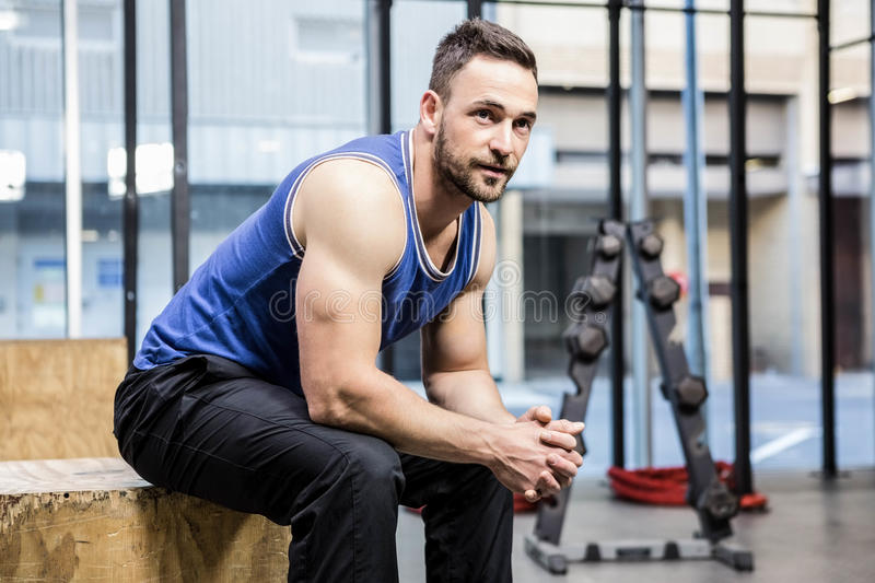 Muscular man sitting on wooden block royalty free stock images