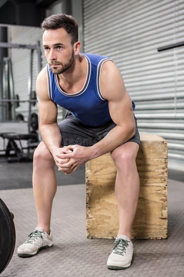 Muscular man sitting on wooden block stock image