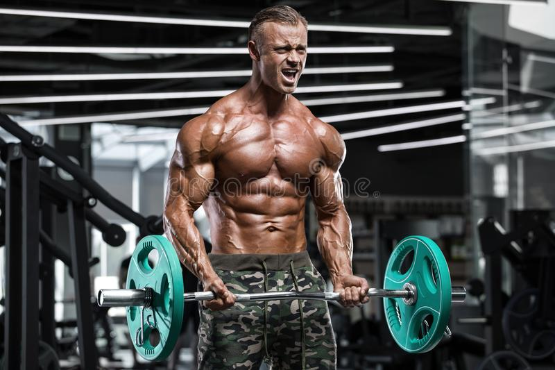 Muscular man working out in gym doing exercises with barbell at biceps, strong male naked torso abs royalty free stock photos