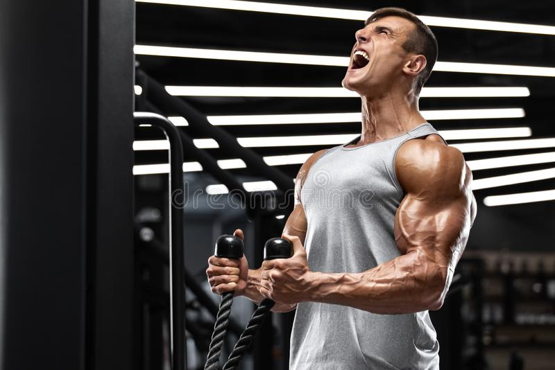 Muscular man working out in gym doing exercises for biceps, strong male royalty free stock photos
