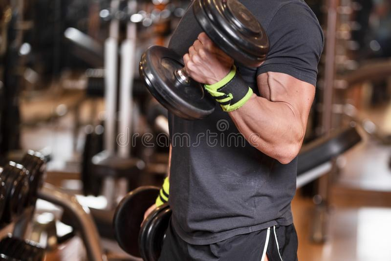 Muscular man working out in gym doing exercises with dumbbells at biceps, strong male. royalty free stock photography