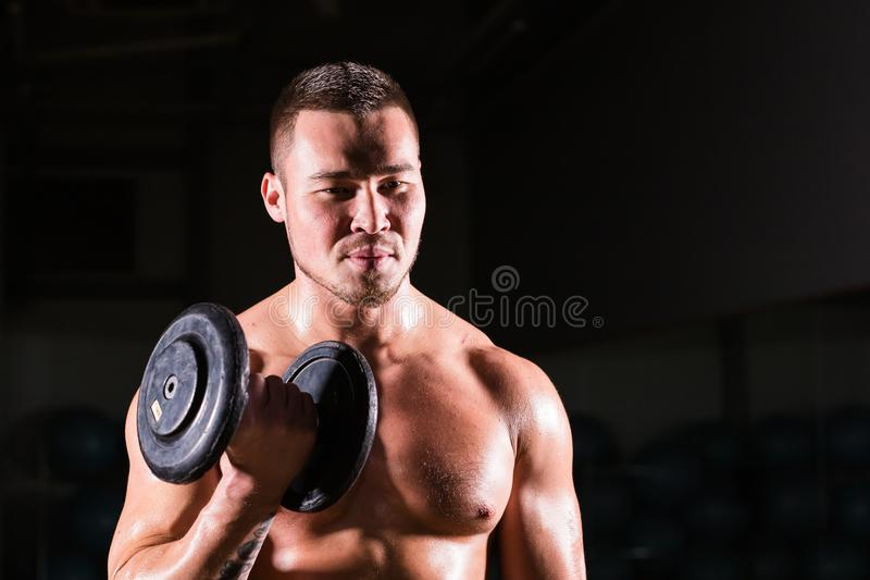 Muscular man working out in gym doing exercises with dumbbells at biceps, strong male naked torso abs. royalty free stock image