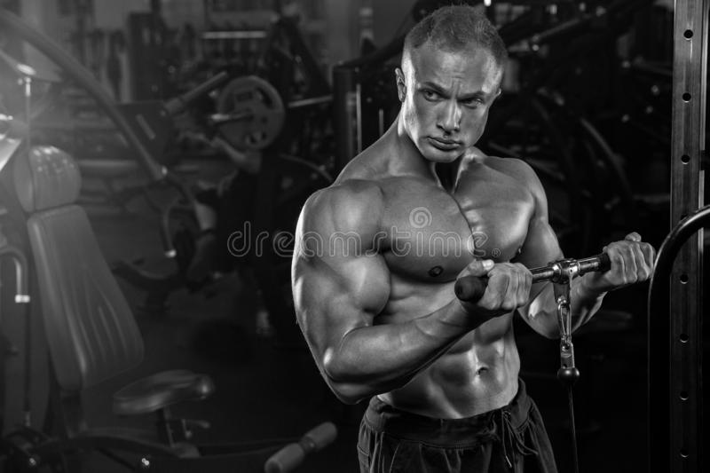 Muscular man working out in gym doing exercises at triceps, strong male naked torso abs stock images