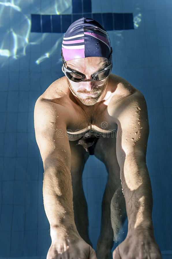 Muscular professional swimmer. In a swimming pool royalty free stock photo