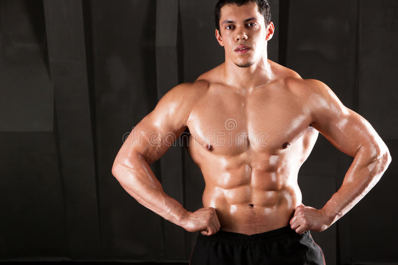 Muscular and torso of young man with perfect abs and chest. royalty free stock image