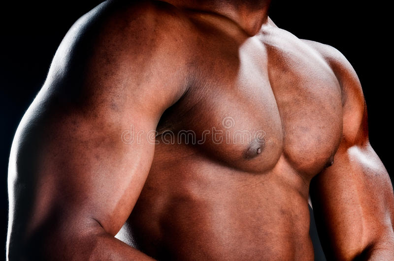 Muscular torso. Close up of very muscular torso of an african american body builder stock photo