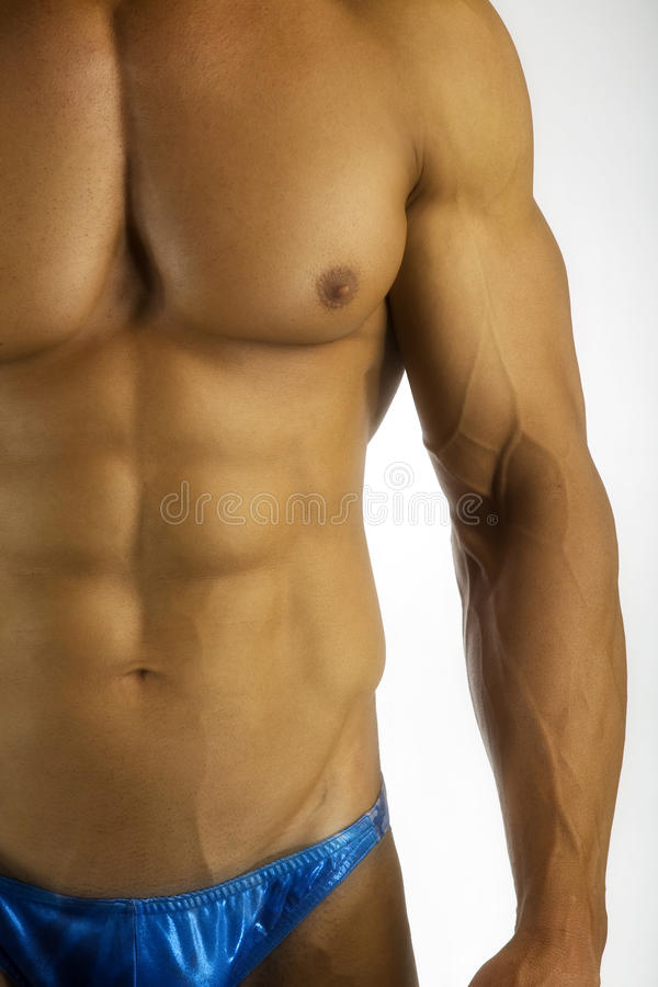 Muscular torso. Bodybuilder's muscular torso showing abs, pecs and biceps royalty free stock photos