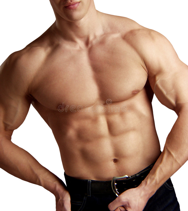Muscular Torso Isolated On White Stock Images