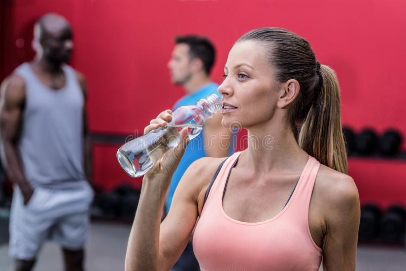 A muscular woman drinking a water royalty free stock photo