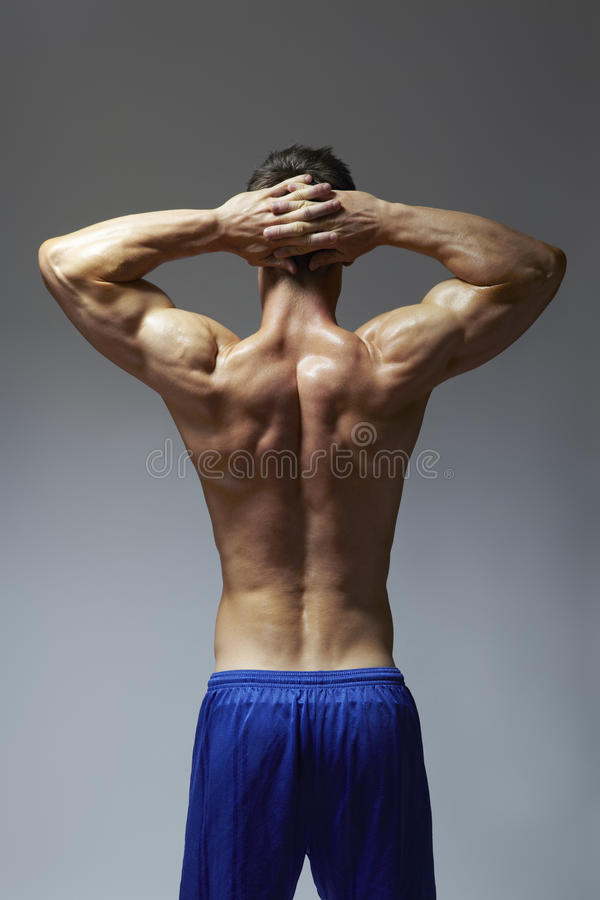 Download Muscular Young Man Flexing Arm Muscles In Sports Outfit Stock Photo - Image: 28466356