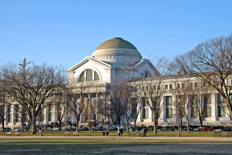 Museo americano di storia naturale, Washington, DC fotografie stock