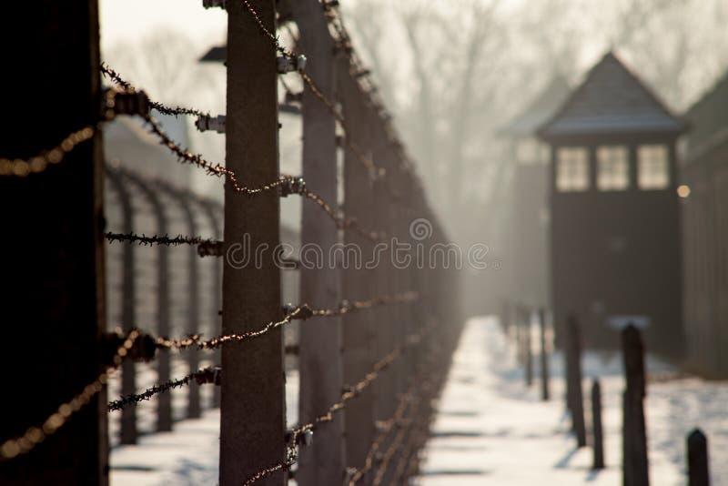 Museo Auschwitz - museo del memoriale di olocausto Filo spinato di liberazione del campo di concentramento di anniversario intorn immagine stock libera da diritti