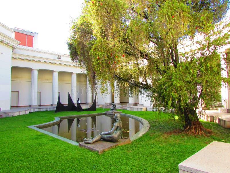 Museo De Bellas Artes Caracas fotografia royalty free