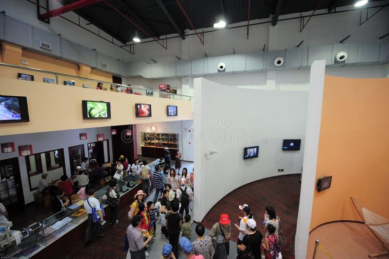 Museo 2010 de la ciudad de Shangai de la expo de China de la tierra fotos de archivo libres de regalías