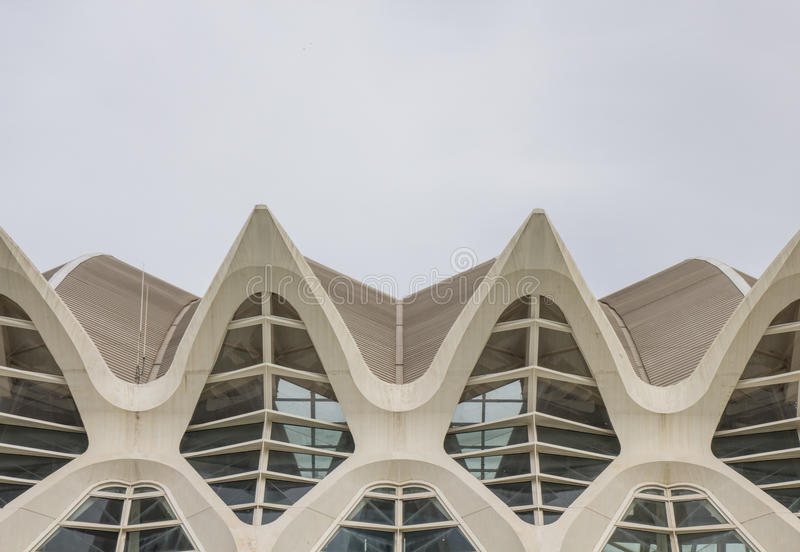 Museo de las ciencias na cidade das artes e da ciência, Valência fotos de stock royalty free