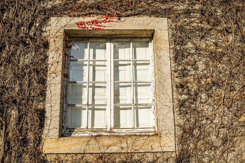Museo DE Quinones DE Leon - Vigo royalty-vrije stock foto