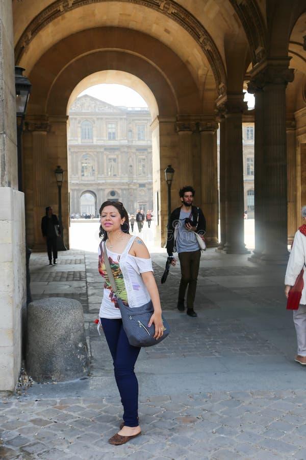 Museo del Louvre - Parigi immagini stock