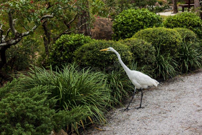 Museo di Morikami e giardino giapponese Delray Beach Florida immagini stock libere da diritti