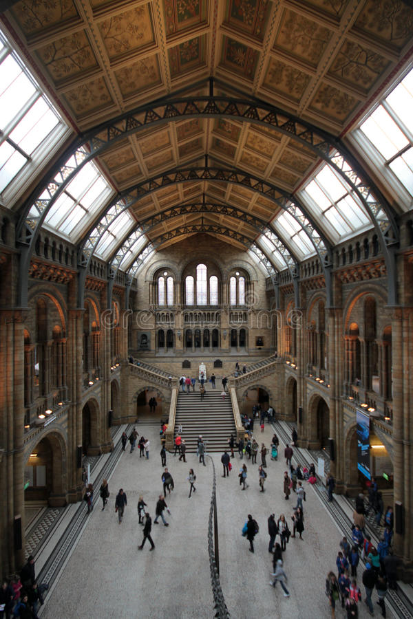 Museo di storia naturale immagini stock