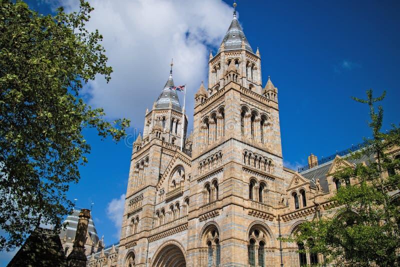 Museo di storia naturale di Londra immagini stock libere da diritti