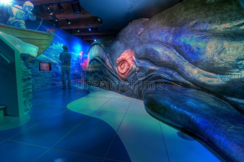 Museo marittimo di Amsterdam immagini stock