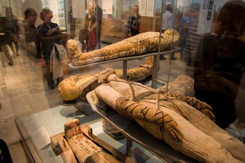 Museo-mummie britanniche fotografie stock